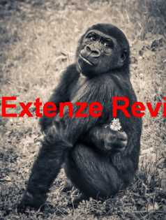 Extenze Black Box Reviews